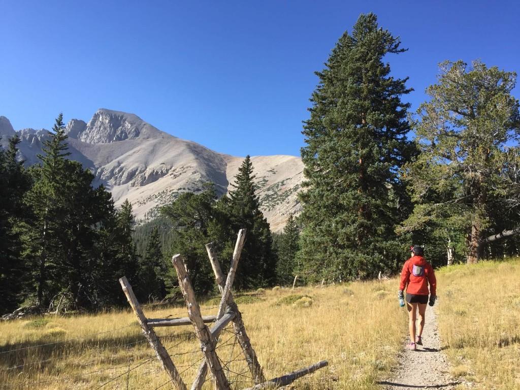 Trail leading to Wheeler Peak Nevada.