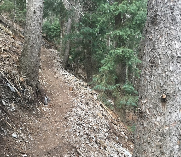 Singletrack Session #11