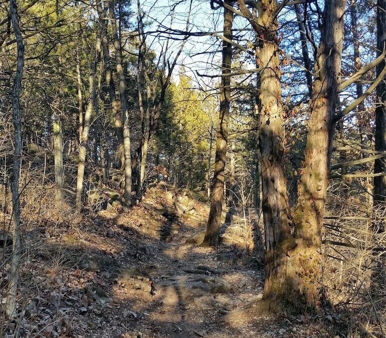 Missouri trail from Richard Allen.